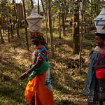 A street scene in northern Rwanda.  Many things are balanced on heads while being carried.  These are big Rwandan Peace Baskets.  The people, especially the women, wear very colorful clothes ...