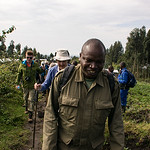 Following Oliver to the Golden Monkeys.  The walk is much like what we did to find the gorillas.