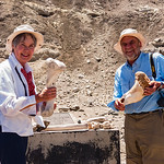 Here we are with some very old fossil bones (animals, not humanoid).